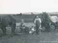 Farming with horses / L'agriculture avec chevaux