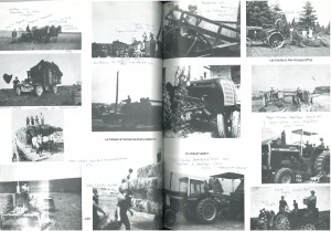 Agriculture page 3