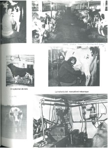 Agriculture Page 5